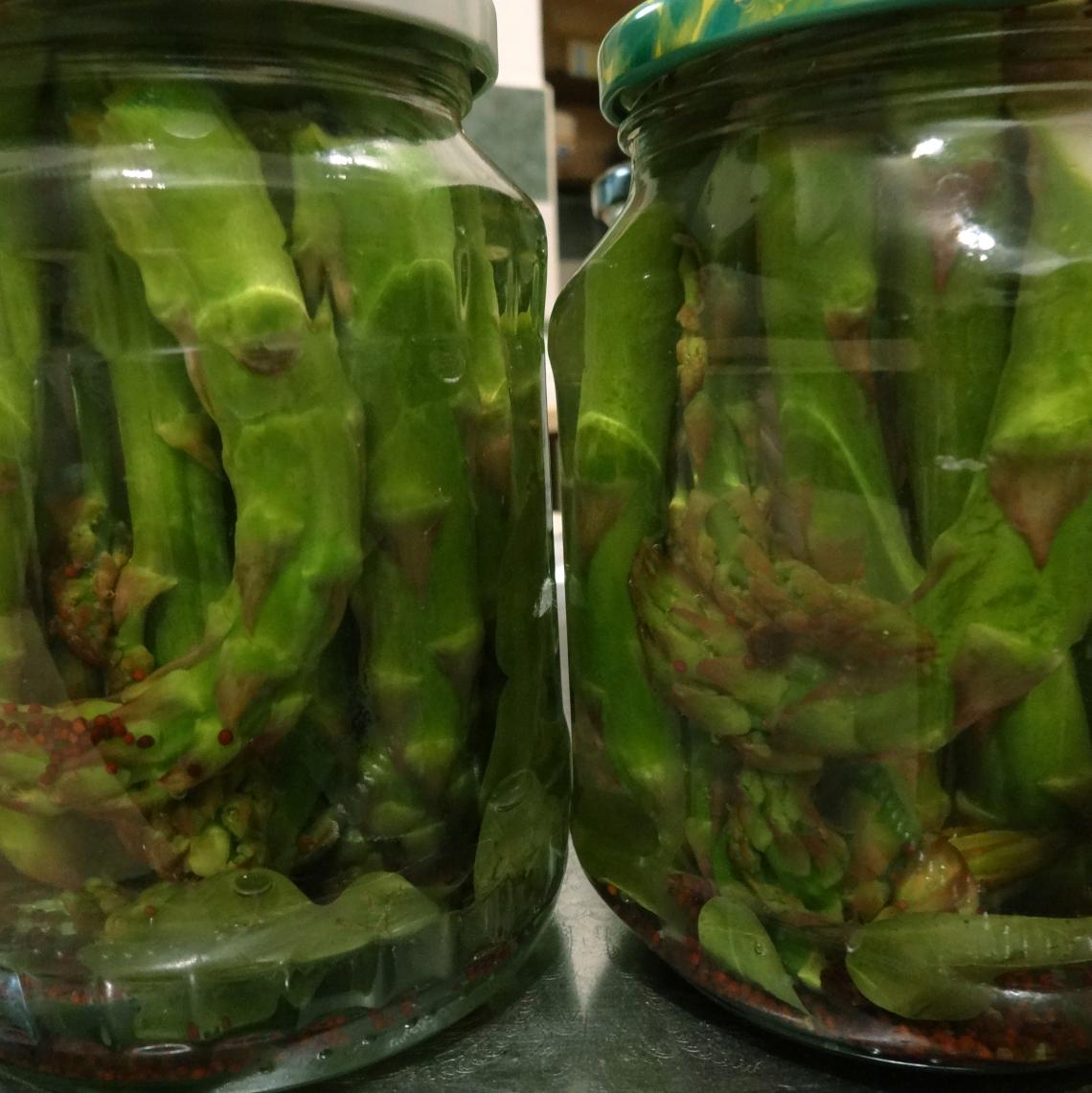 pickle farm 2